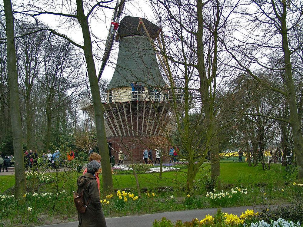 Windmühle inmitten von Blumen und Parkanlagen