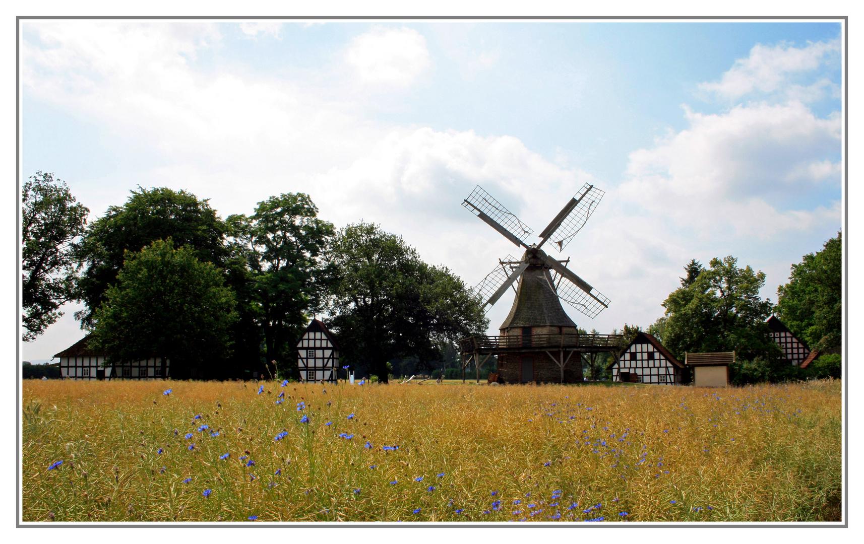 Windmühle Levern