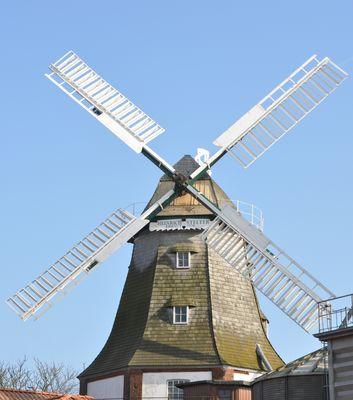 Windmühle Stelter in Scholen