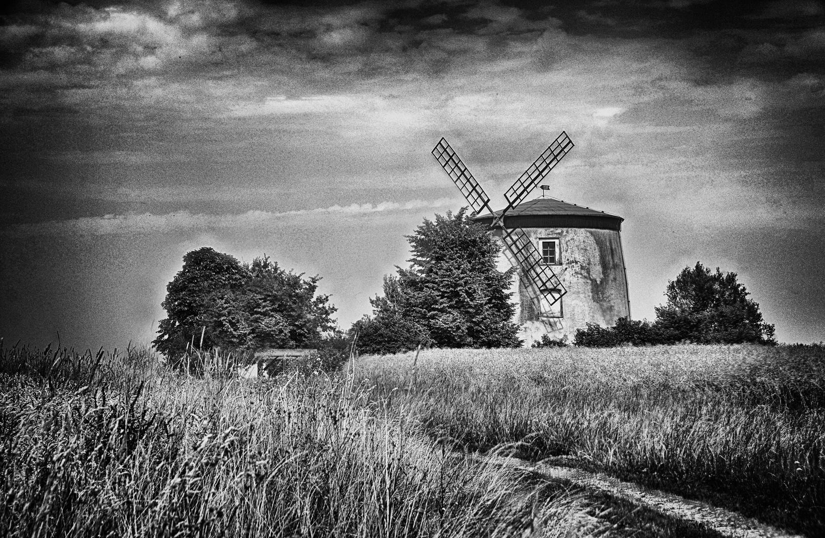 Windmühle Tettau