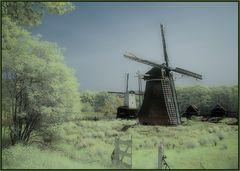 Windmühlen-Idyll