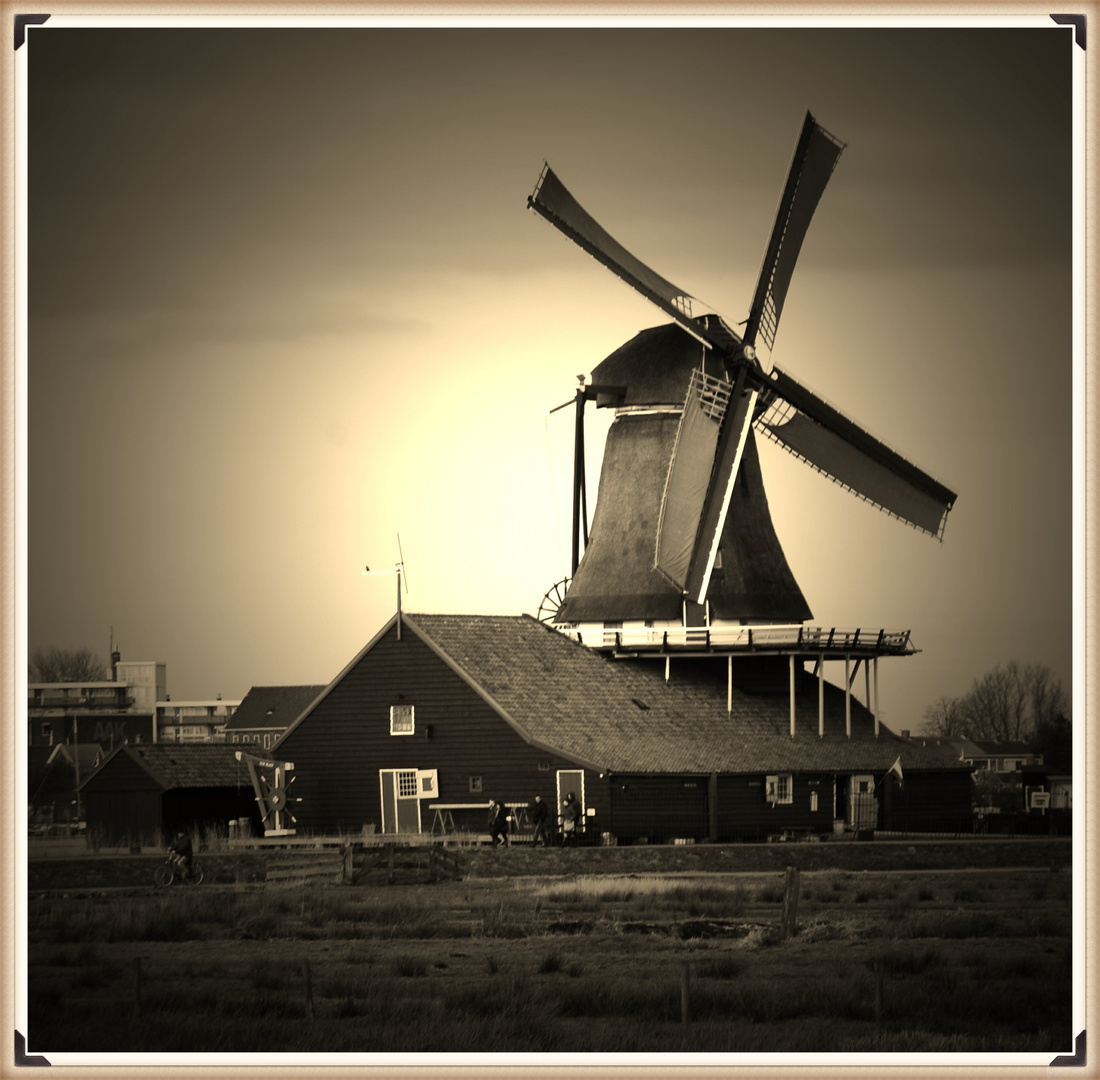 Windmühlenpark 1