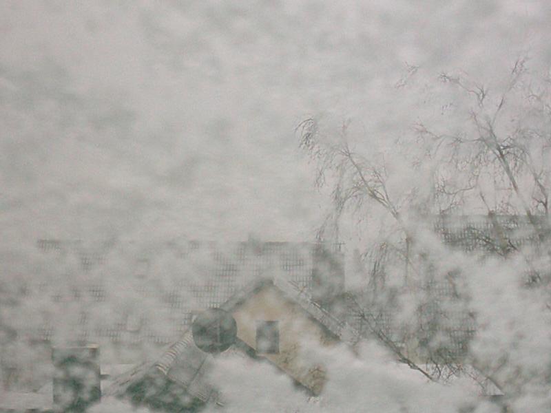 Window 1: Snow I