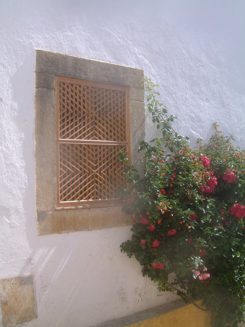 Window with Rambler Rose, Obidos