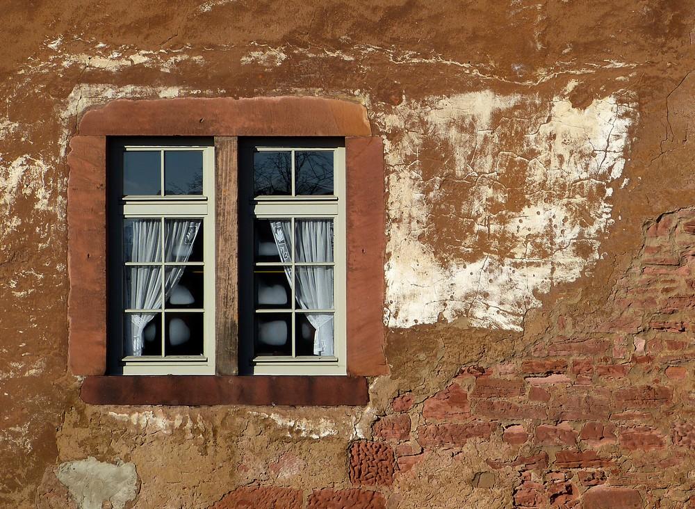 ...windows 12...