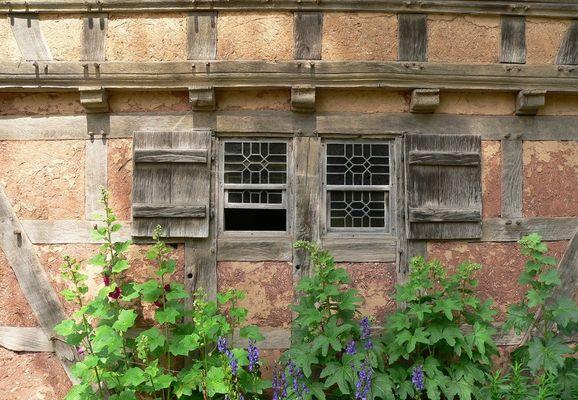 Windows 1748