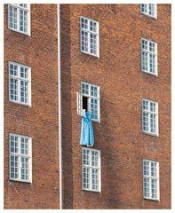 Windows of Copenhagen