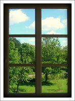 Window(s) XP