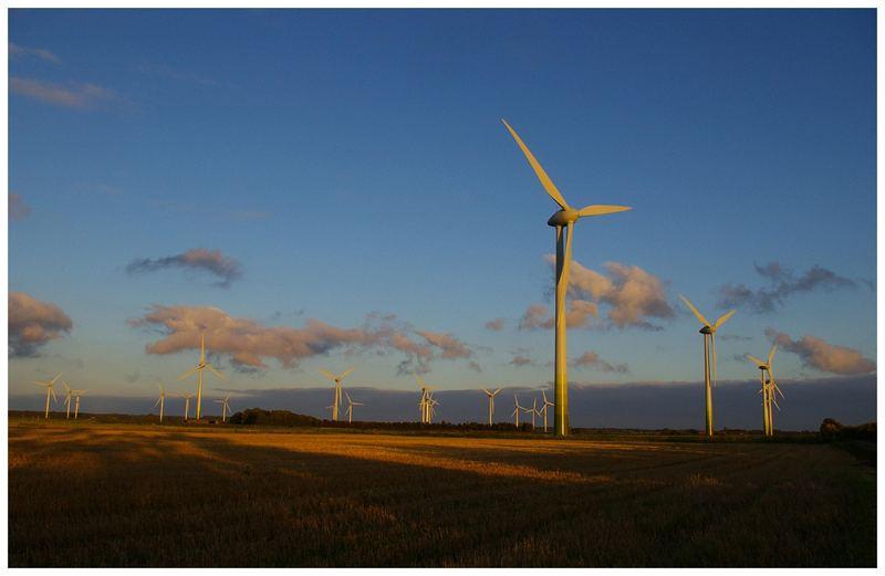 Windpark im letzten Abendlicht