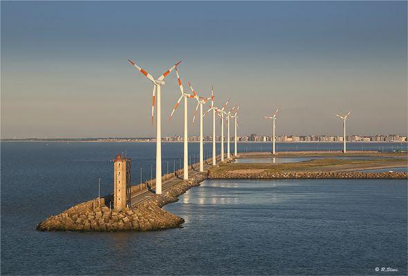 Windpark in Zeebrügge