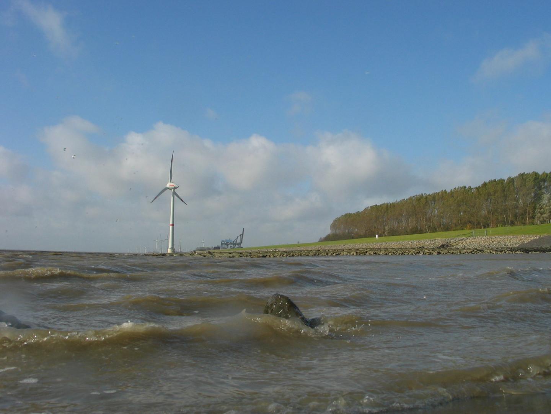 Windrad am Seedeich im Jarsumer Hafen