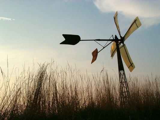 Windrad in Dollbergen
