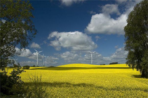 ...Windräder...