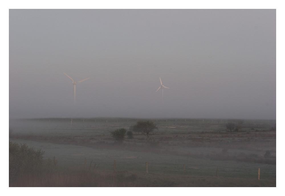 Windräder am Morgen