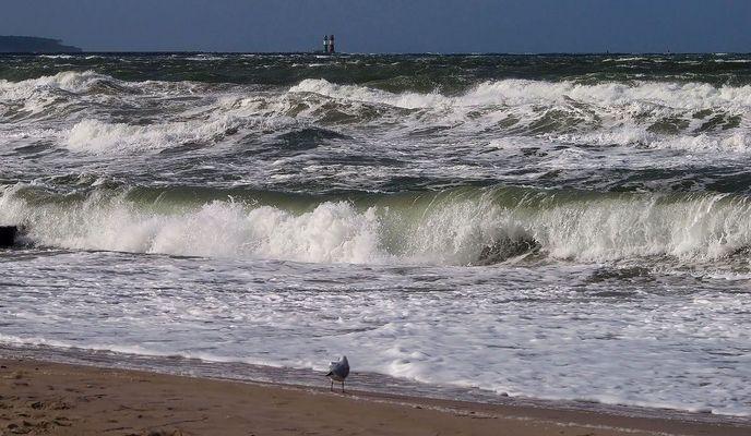 Windstärke 7 im Oktober 2012 ( Bild 2)