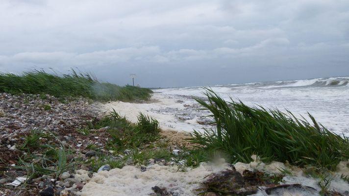 Windstärke 8Bft in Falshöft an der Ostsee