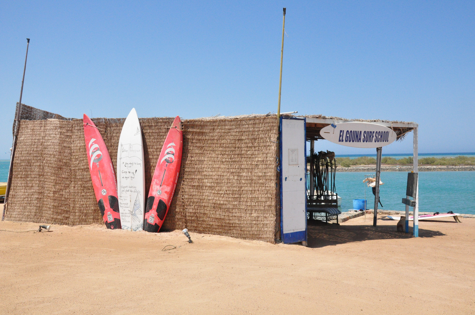 windsurfing El Gouna