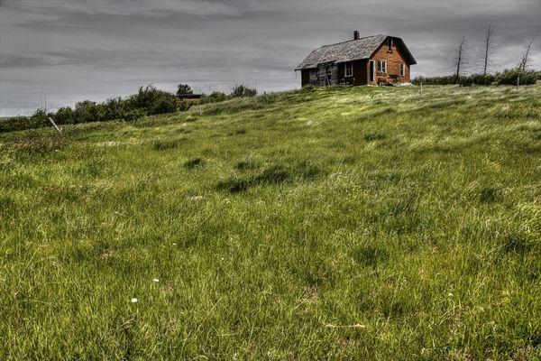 Windswept Hill