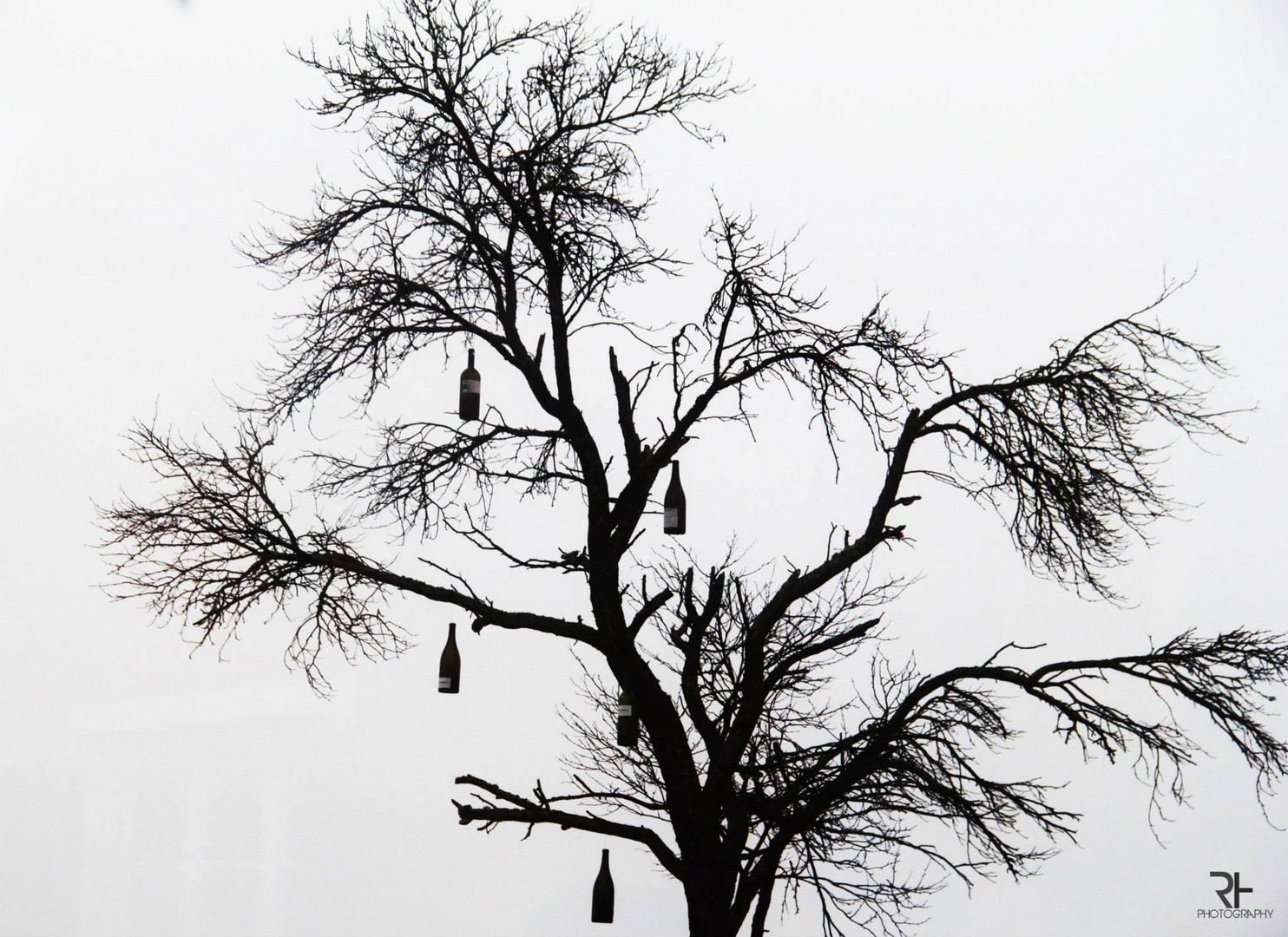 wine tree.