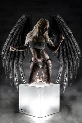 Wing Cube