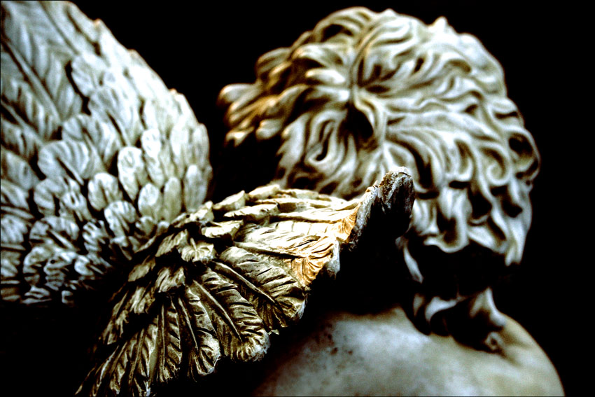 . . . wings of an angel. silver & gold . . .