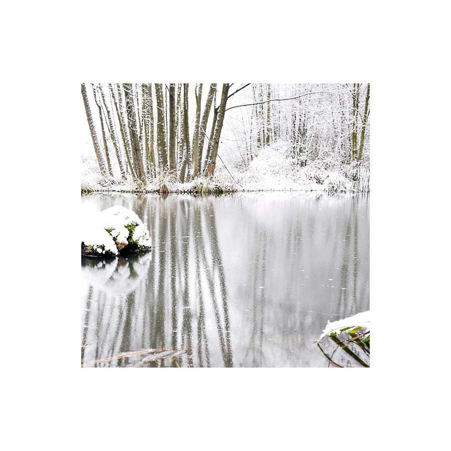 ° winter °
