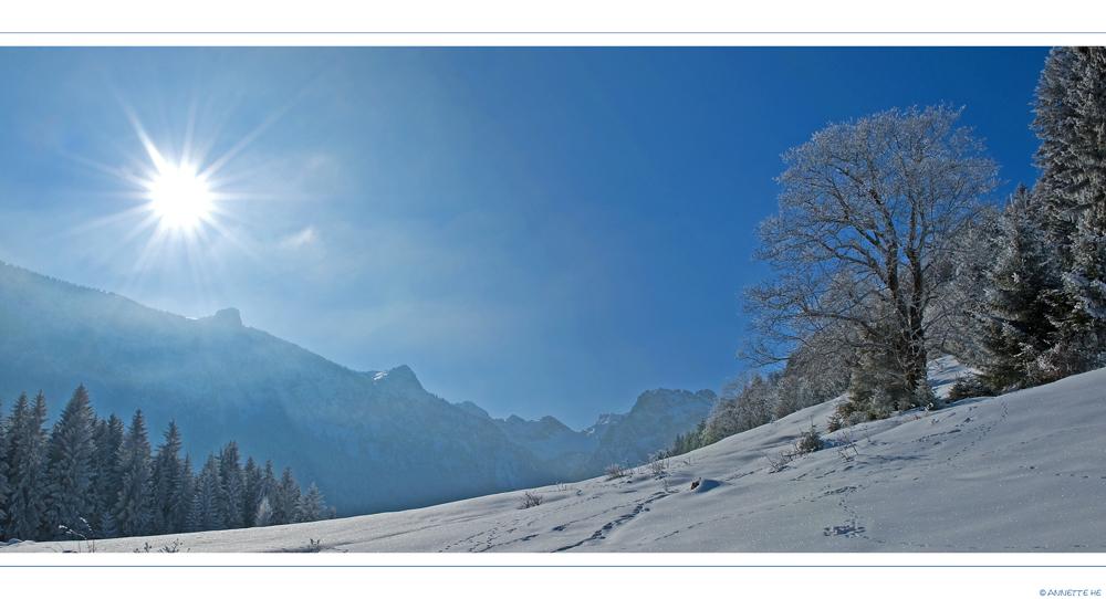 Winter (16)