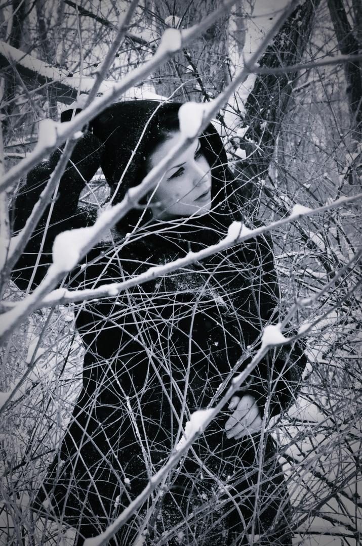 Winter 2.