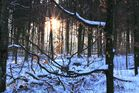 Winter 2009 (17)