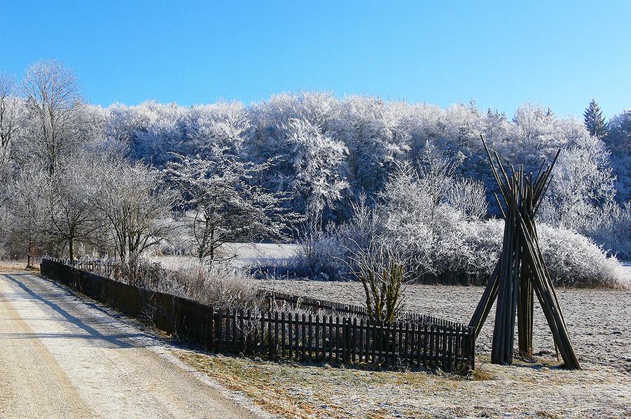 Winter 2009-3