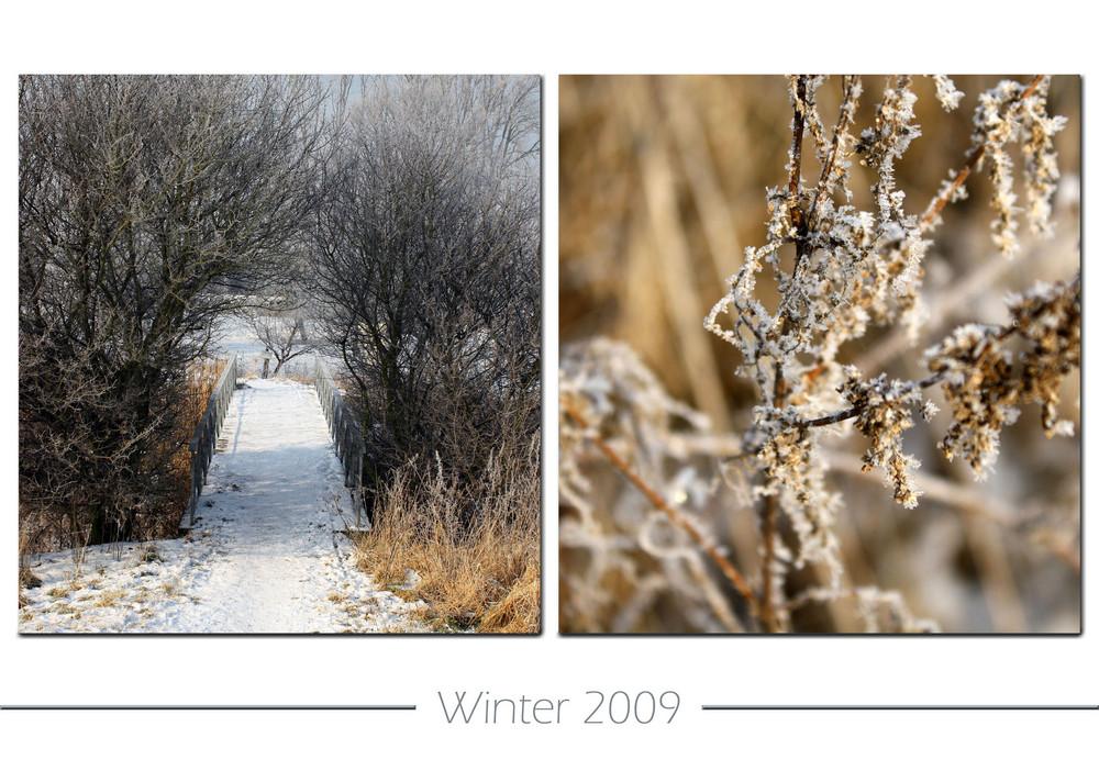 ~ Winter 2009 ~
