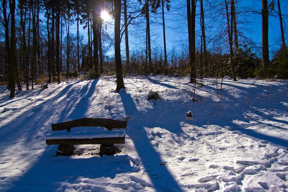Winter 2010 (14)