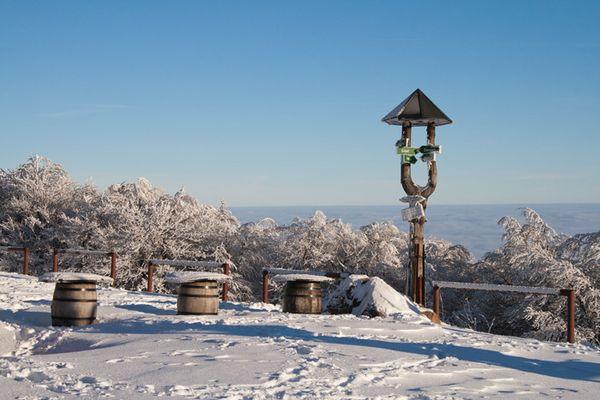 Winter 2010 auf dem Inselsberg