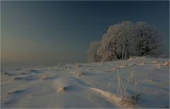 Erzgebirge 2010