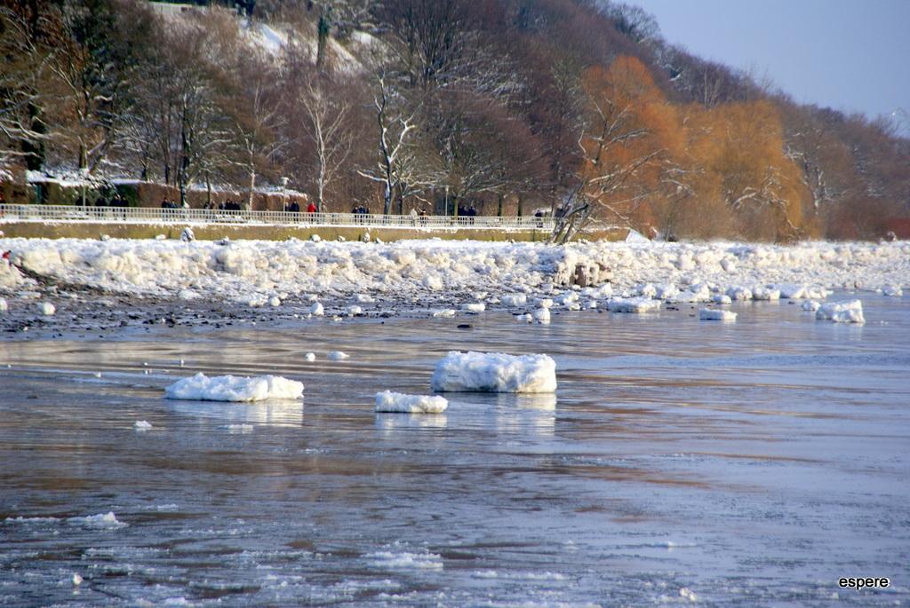 Winter 2010/11 an der Elbe