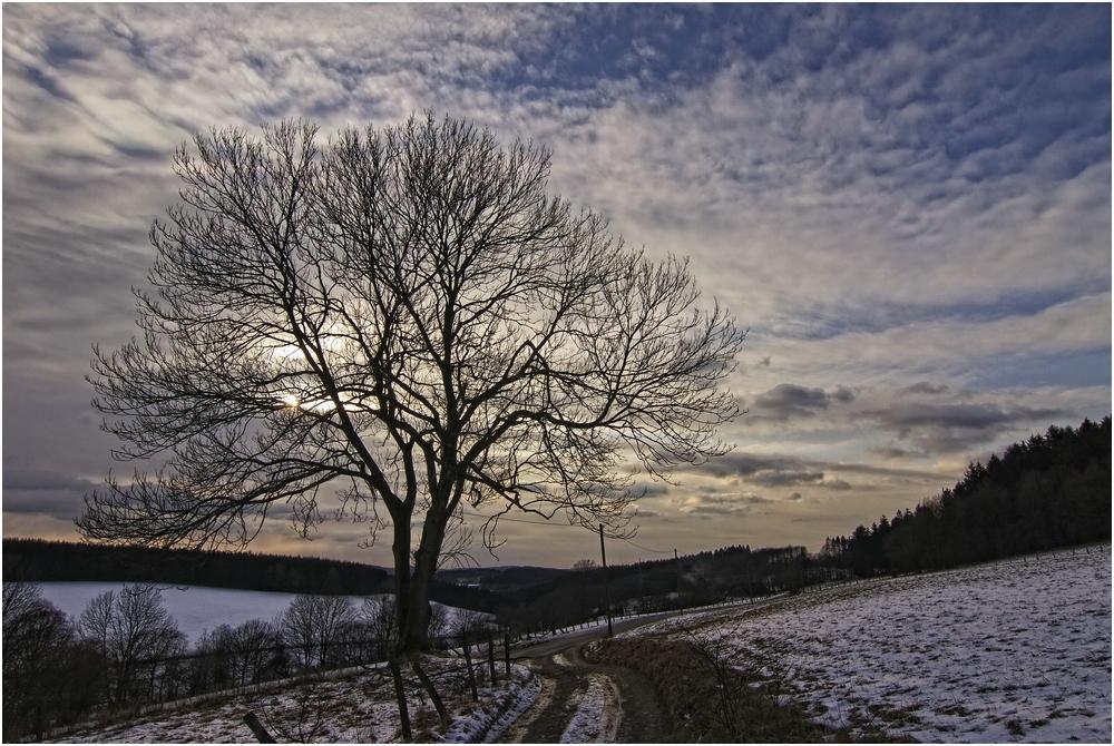 Winter 2012 / 4