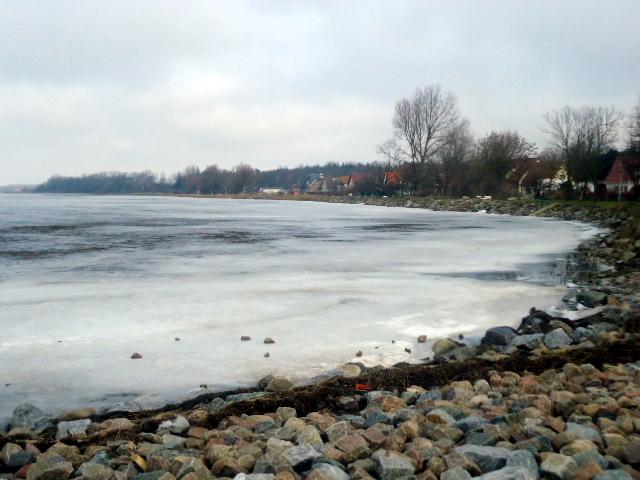 Winter 3 / Invierno