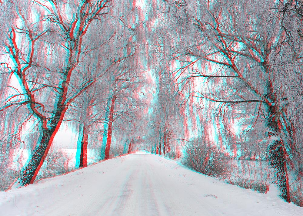 Winter (3d - Anaglyphe)