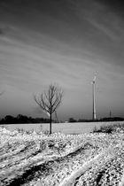 Winter -6-