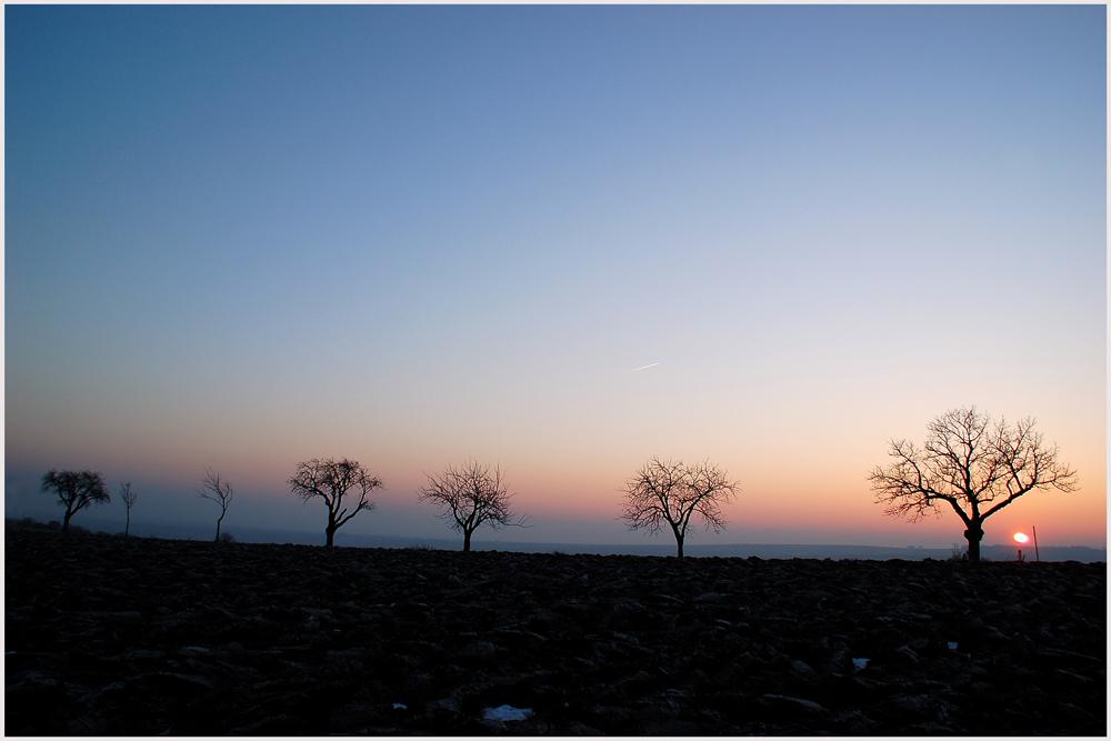 Winter - Abendsonne 2