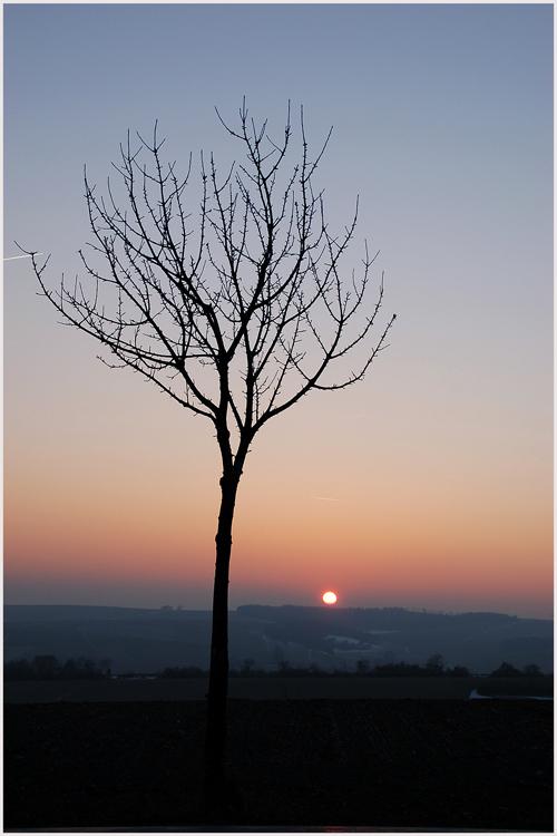 Winter - Abendsonne 5