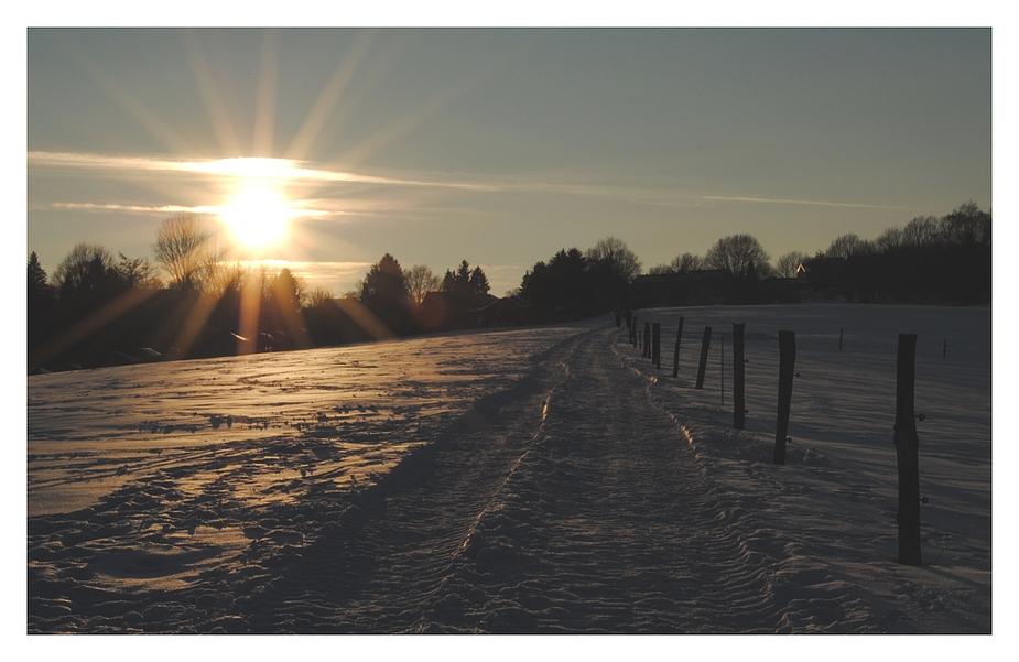 Winter- Abendsonne