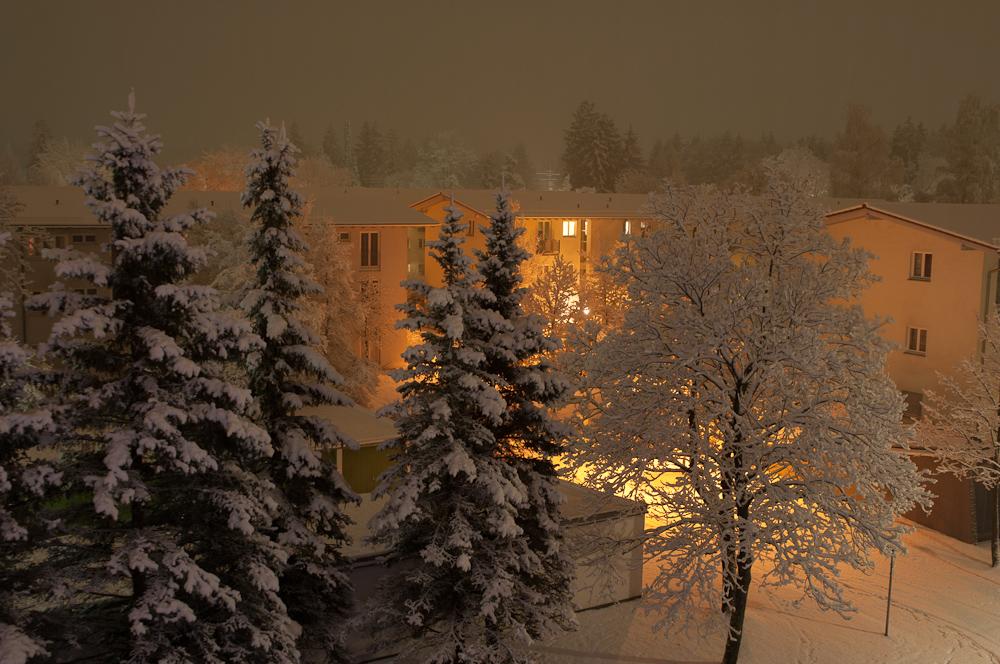 Winter Abschied (2)