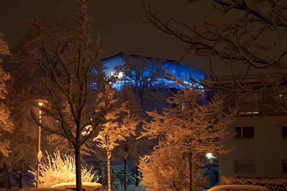Winter Abschied (3)