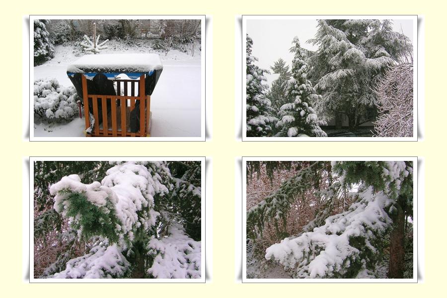 Winter ade????