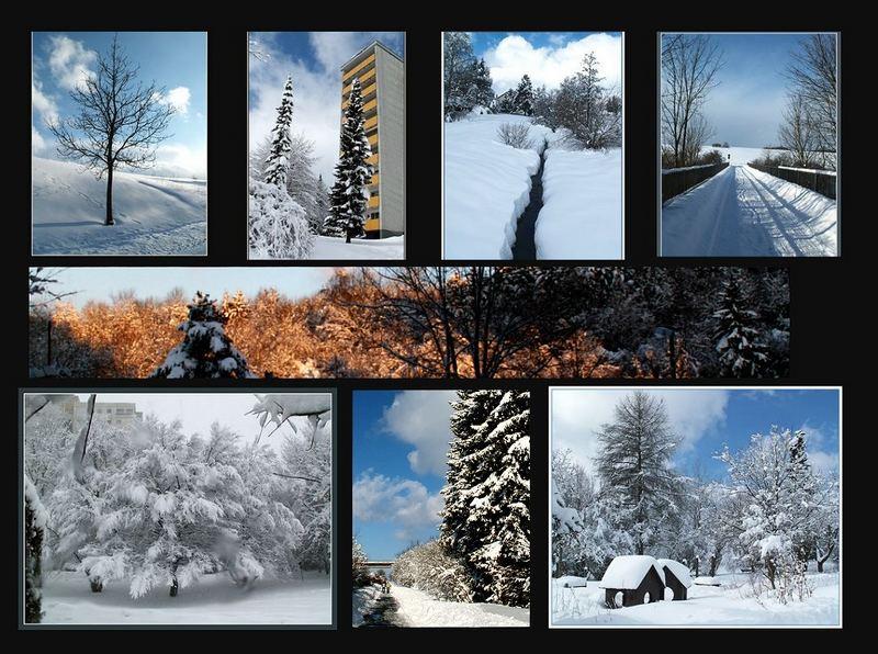 Winter ade....