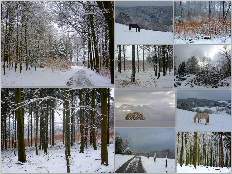 Winter ade ....