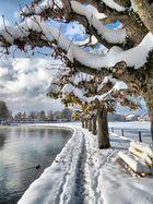 Winter am Ägerisee