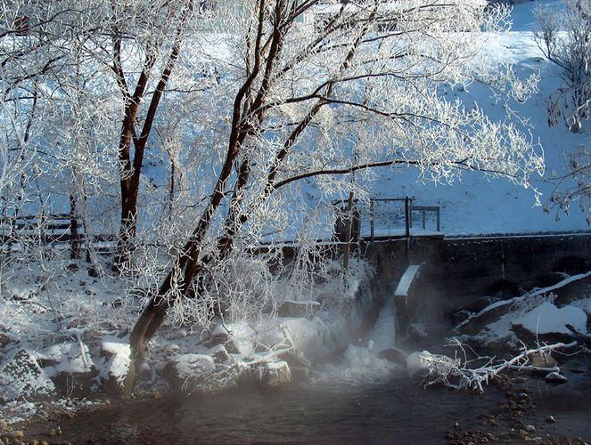 Winter am Bach