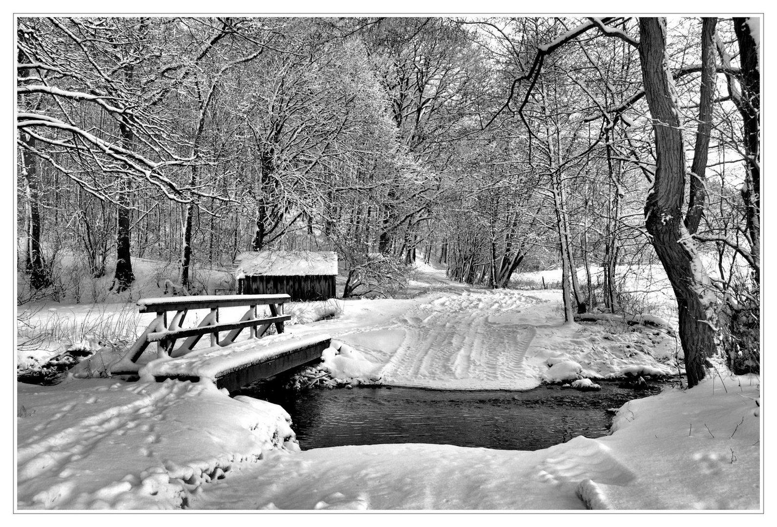 # Winter am Bach....s/w